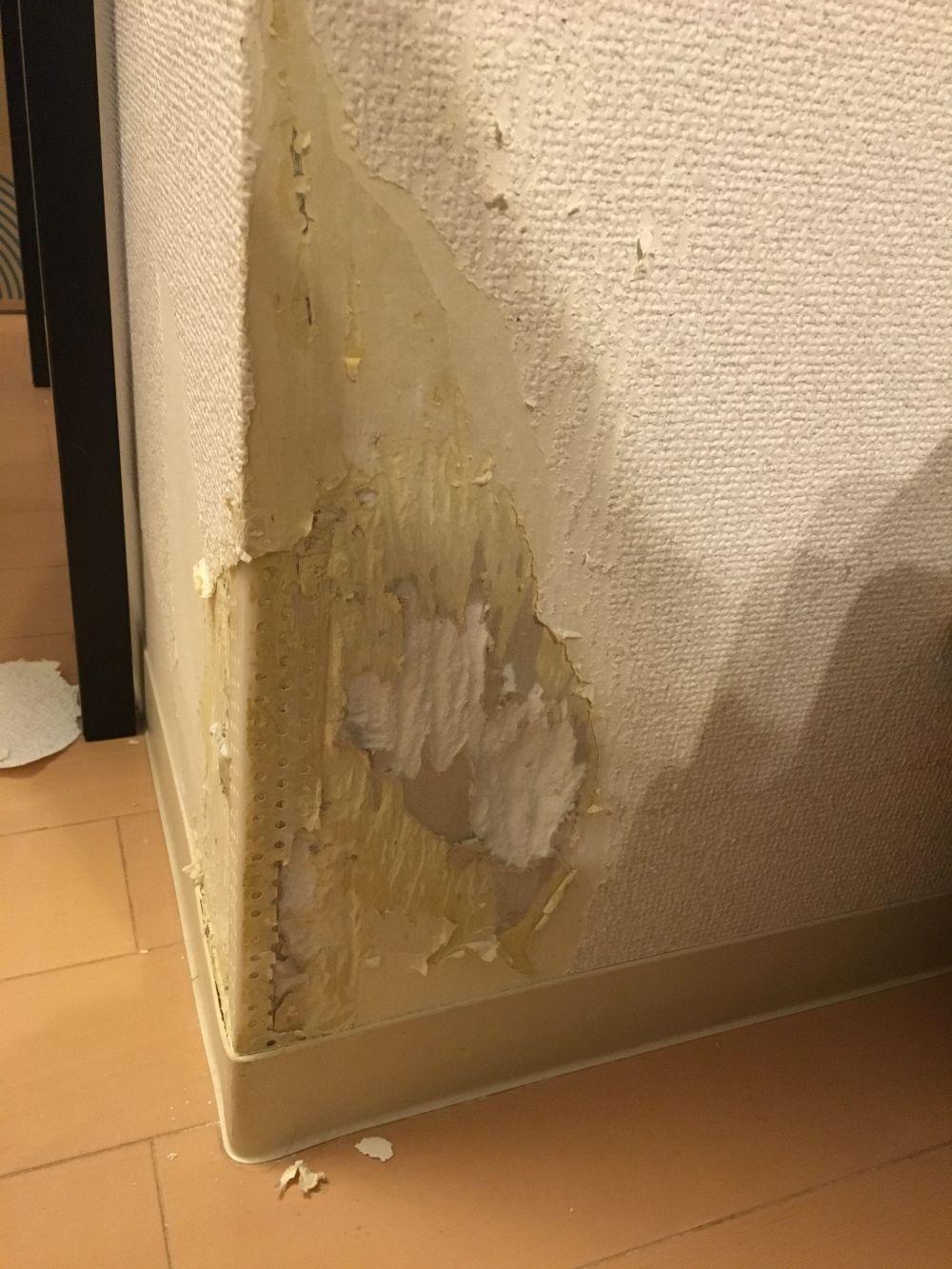 リビングのペットに噛まれた壁紙と柱の修繕依頼 リフォームのことなら家仲間コム