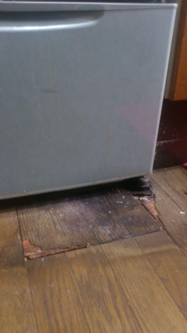漏れ 水 冷蔵庫 から