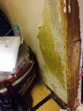 「柱と襖のペット傷修復」についての画像
