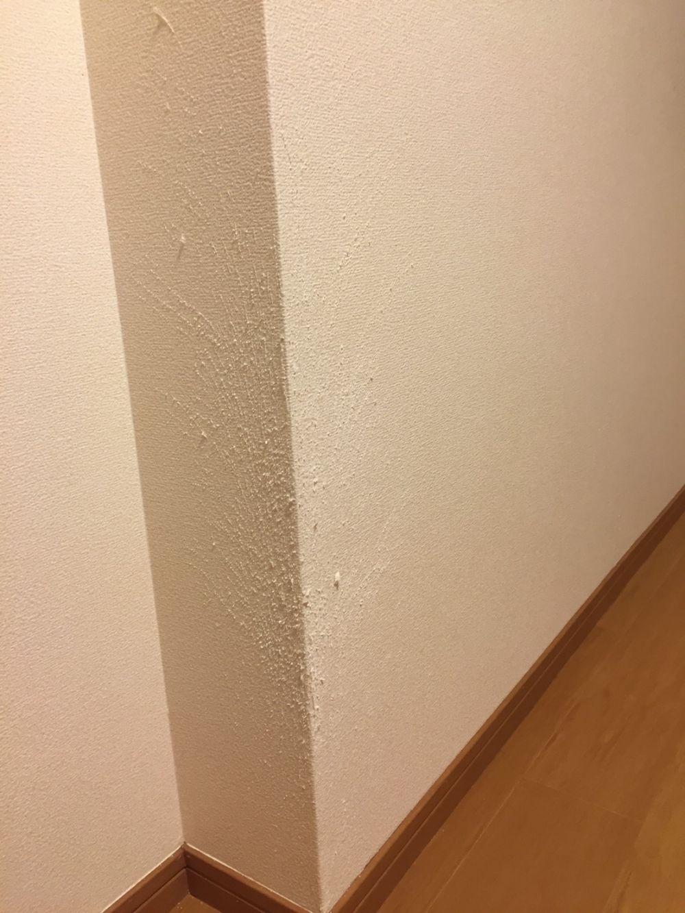 猫が爪とぎした壁紙修理をお願いします リフォームのことなら家仲間コム