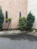 「外構の植木を取り除き、綺麗にしたい」についての画像
