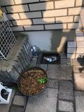 「散水栓を立水栓に変更工事」についての画像