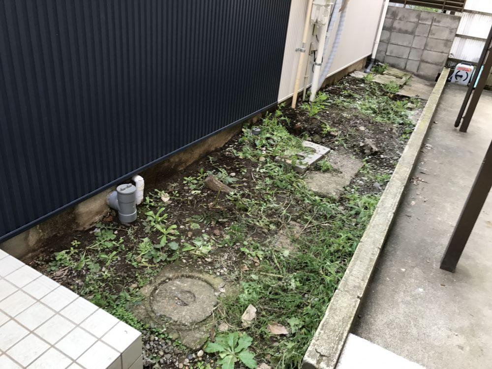 jirei_image29124
