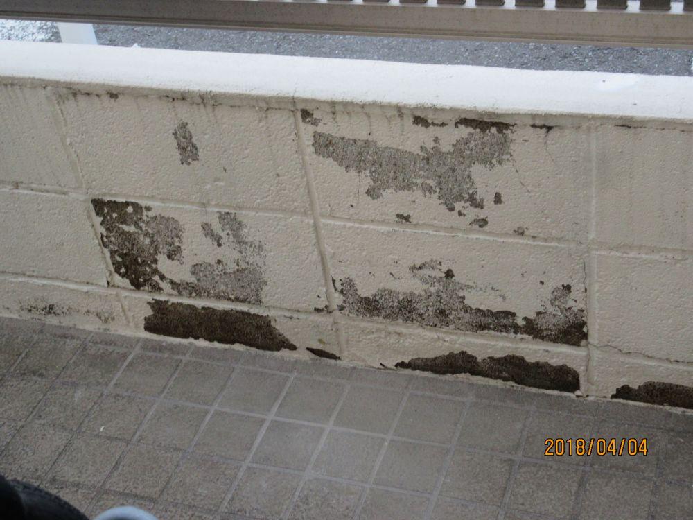 東側の塀裏側です。こちらも塗膜を落として塗装します。
