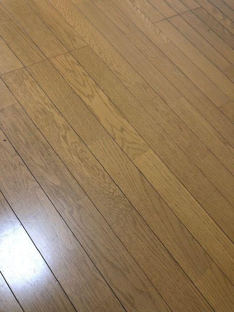 jirei_image38582