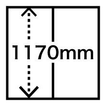 1170mm